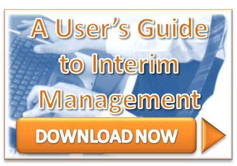 users guide to interim management