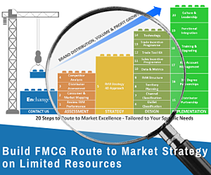 Build a Winning FMCG Route to Market Strategy on Limited Resources