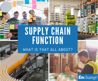 supply chain function definition